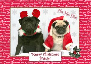 pugs christmas card