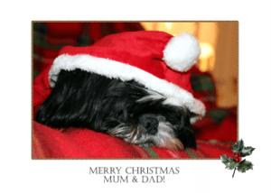 bertie christmas